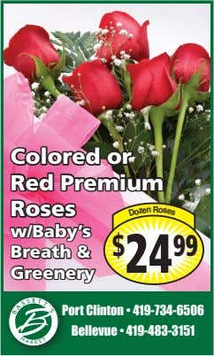Colored or Red Premium o s Roses R e n w/Baby's s $ 24 99