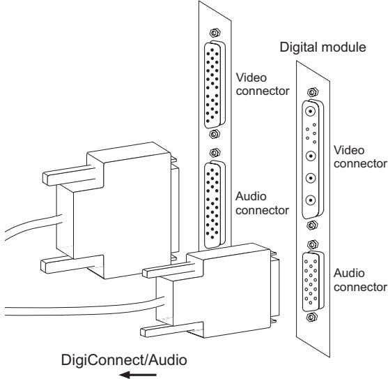 Digital module Video connector Video connector Audio connector Audio connector DigiConnect/Audio