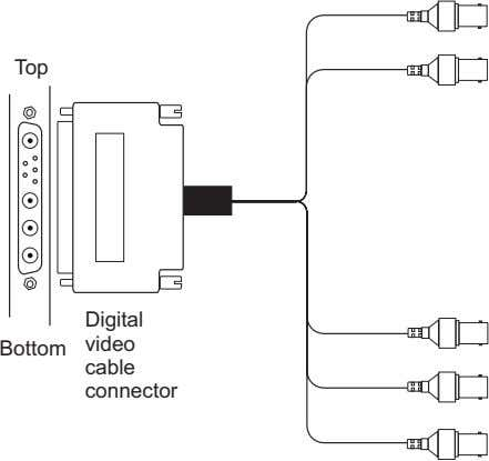 Top Digital video Bottom cable connector