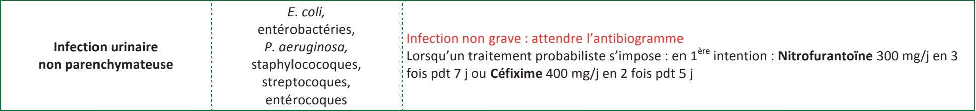 E. coli, entérobactéries, Infection non grave : attendre l'antibiogramme Infection urinaire P. aeruginosa, non