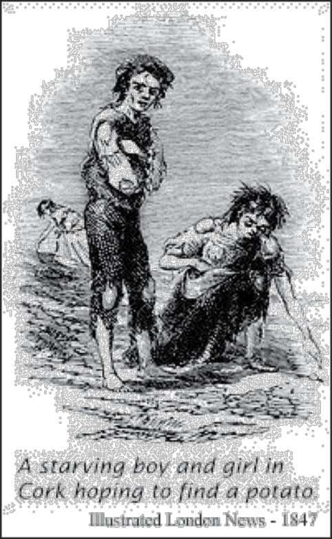 Figure 1.3. A starving boy and girl in Cork hoping to find a potato 1847.