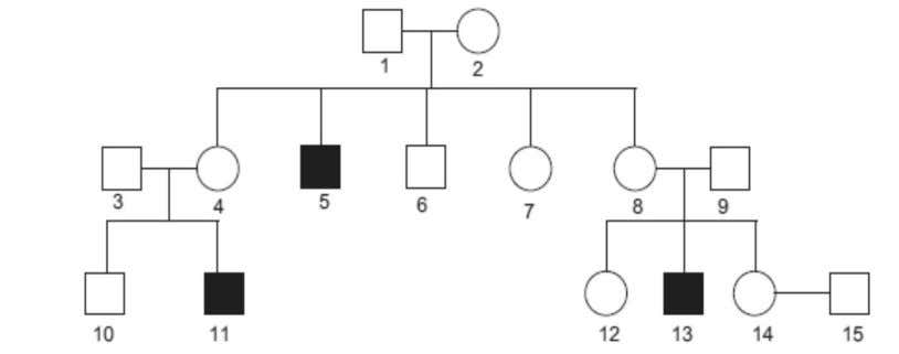 below shows the inheritance of Haemophilia in one family. Study the pattern of inheritance and answer