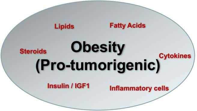 Lipids Fatty Acids Obesity Steroids Cytokines (Pro-tumorigenic) Insulin / IGF1 Inflammatory cells