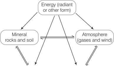 Energy (radiant or other form) Mineral rocks and soil Atmosphere (gases and wind)