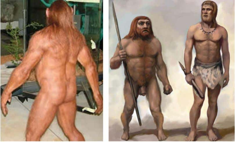 Another issue to discuss is how much body hair Neanderthals did or did not have.