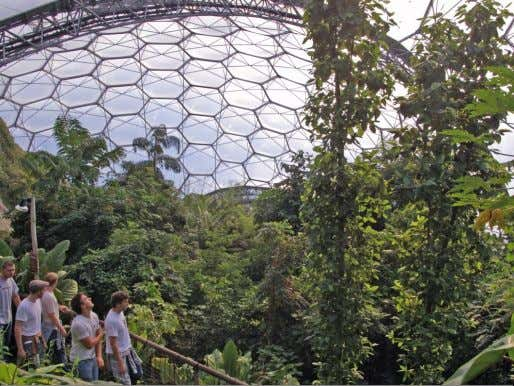 refine their management plan for the site. (© Paul Ramsay) Vist ot the Eden Project, Cornwall.