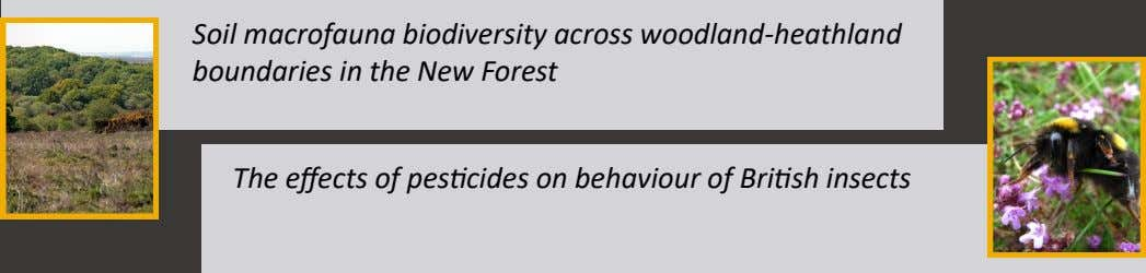 Soil macrofauna biodiversity across woodland-heathland boundaries in the New Forest The effects of pesticides on