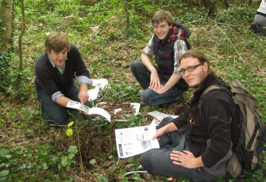 Conservation biology students in Mexico. (© Paul Ramsay) Woodland invertebrate identification, Mount Edgcumbe Country