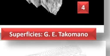 4 Superficies: G. E. Takomano