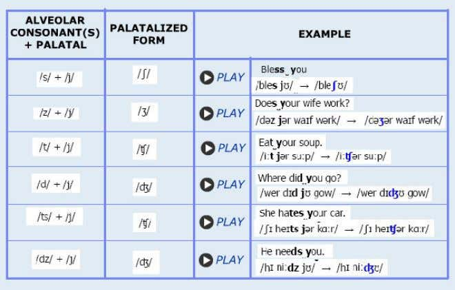 look at and listen to some examples in the following chart. PRACTICE 1 Listen to the