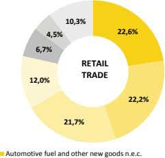 10,3% 22,6% 4,5% 6,7% RETAIL TRADE 12,0% 22,2% 21,7% Automotive fuel and other new goods n.e.c.