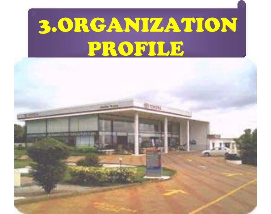 3.ORGANIZATION PROFILE