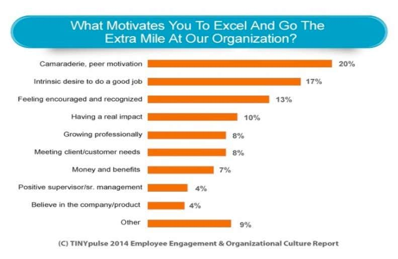 Figure 3: Motivation factors (TINYpulse Employment Engagement & Organiza- tional Culture Report 2014) The results