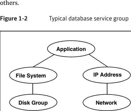 others. Figure 1-2 Typical database service group Application File System IP Address Disk Group Network