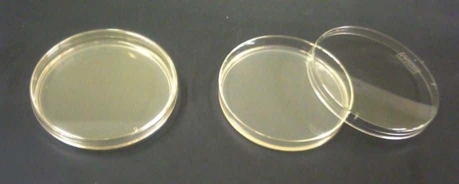 Chemical Requirements Penicillin and other antibiotics Agar 13