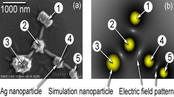 Carbon Connections Between Ag Nanoparticles via Atmospheric Microplasma Synthesis [CARBON (Letters) 47, 344 (2009)]