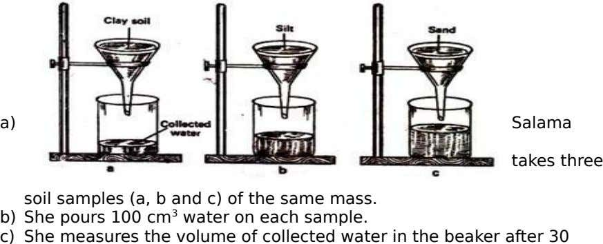 a) Salama takes three soil samples (a, b and c) of the same mass. b) She