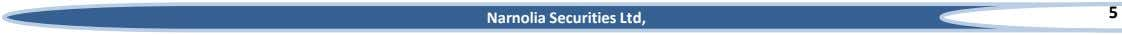 5 Narnolia Securities Ltd,