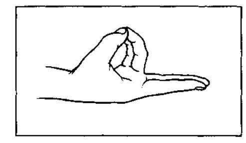 70 MUDRA S 6 PRAN MUDRA (Life Mudra) With each hand: Place the tips of the
