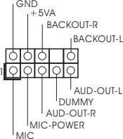 GND +5VA BACKOUT-R BACKOUT-L 1 AUD-OUT-L DUMMY AUD-OUT-R MIC-POWER MIC