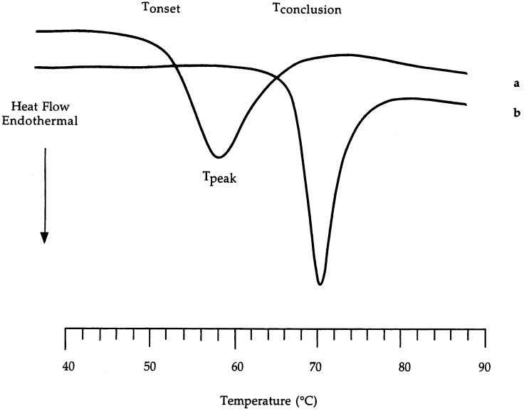 Journal of Biological Macromolecules 27 (2000) 1–12 3 Fig. 2. DSC thermograms of a commercial wheat
