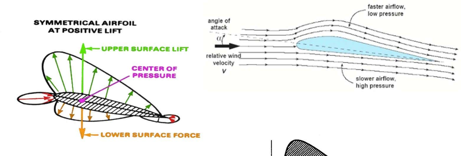 of the wing to travel faster than the air beneath the wing. The integrated differences in