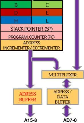 B C D E H L STACK POINTER (SP) PROGRAM .COUNTER (PC) ADDRESS INCREMENTER /