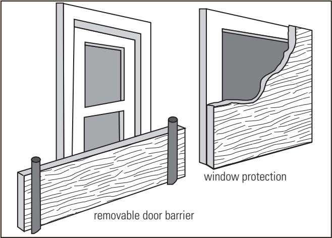 window protection removable door barrier