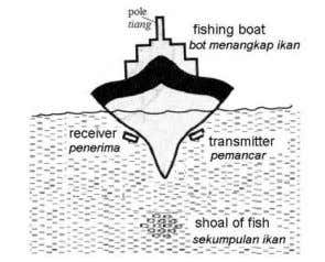 7. Diagram 7 shows a fishing boat using a sonar system to detect a shoal of