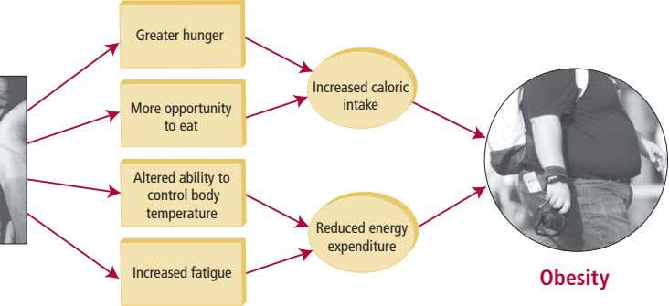 Greater hunger Increased caloric intake More opportunity to eat Altered ability to control body temperature