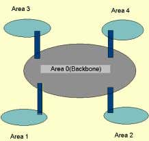 of information a router must maintain about the full AS.  Each router in an area