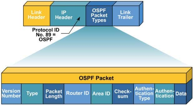 inside datagrams.  OSPF has gone through two versions: version 1 and version 2. Most implementations