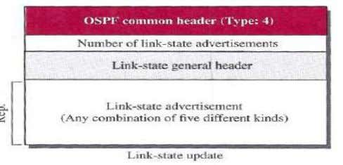 OSPF; each router that receives a link-state update message needs to acknowledge it. Link state acknowledgment