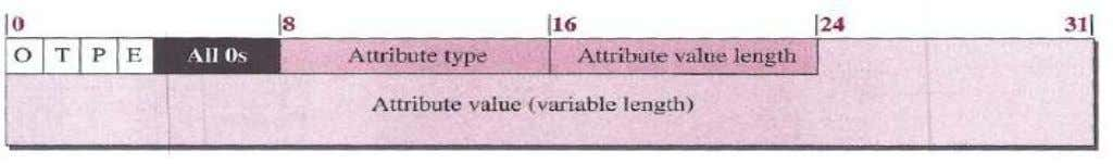 O: Optional bit (set if attribute is optional) P: Partial bit (set if an optional