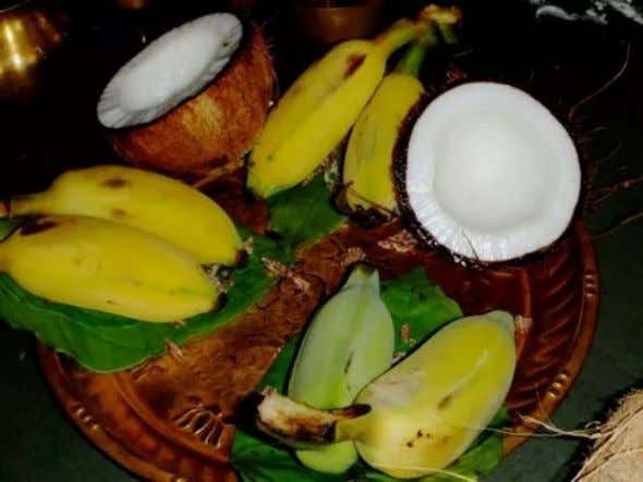 Coconut and Banana are the only two fruits in this world which are considered to be