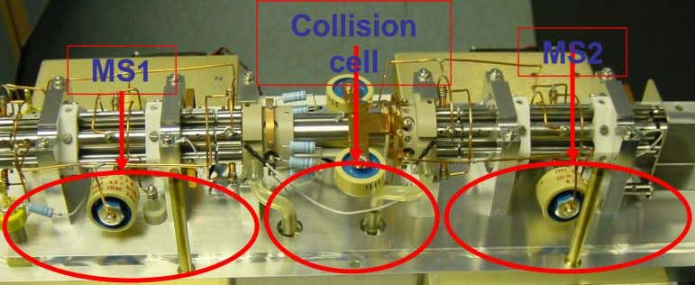 Collision MS2 cell MS1 14