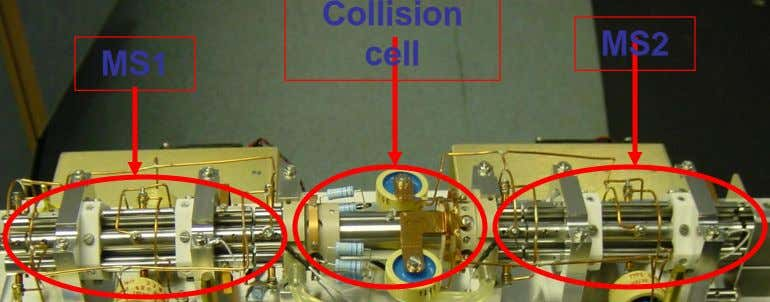 Collision MS2 cell MS1