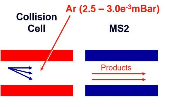 Ar (2.5 – 3.0e -3 mBar) Collision Cell MS2 Products