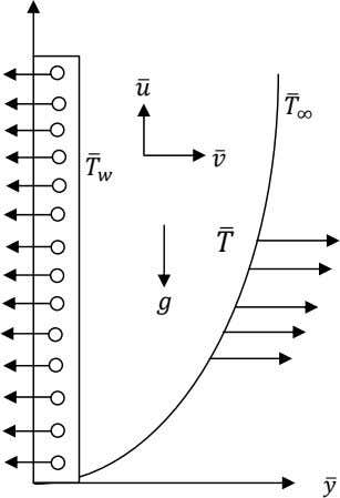 theory, the governing equations relevant to the problem are: 0 ̂ ̂ Physical configuration and coordinate