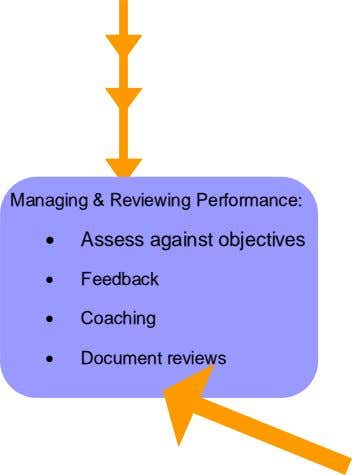 Managing & Reviewing Performance:  Assess against objectives  Feedback  Coaching  Document reviews