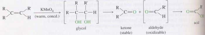 Aldehydes and ketones are also both obtained as products of the oxidative cleavage of alkenes. Unlike