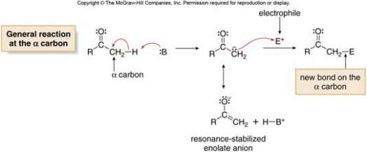 [2] Reaction at the α carbon. Formation of resonance- stabilized enolate anion made the C-H bond