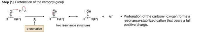 Acid-catalyzed nucleophilic addition • In this mechanism, protonation precedes nucleophilic attack as shown above. •