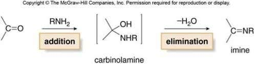 carbonyl groups in the presence of mild acid to form unstable carbinolamines, which readily lose water