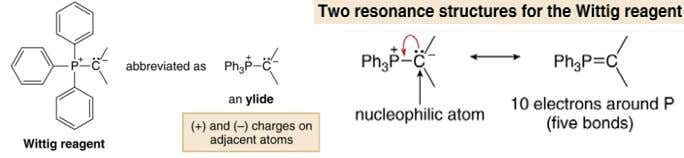 plus another alkyl group that bears a negative charge. • A Wittig reagent is an ylide