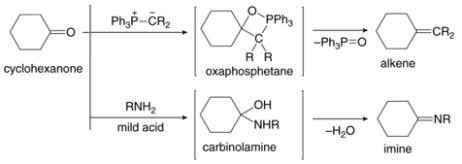 Recap Recap … … Wittig Reactions: • Formation of phosphorus ylide From nucleophilic attack of triphenylphosphine
