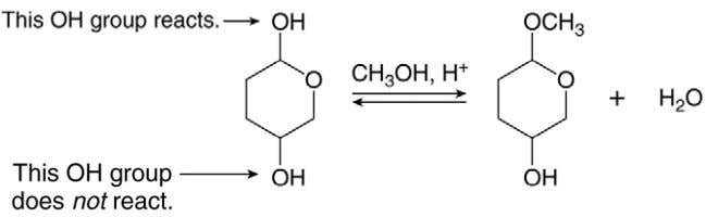 an alcohol OH and a hemiacetal OH is treated with an alcohol and acid, only the