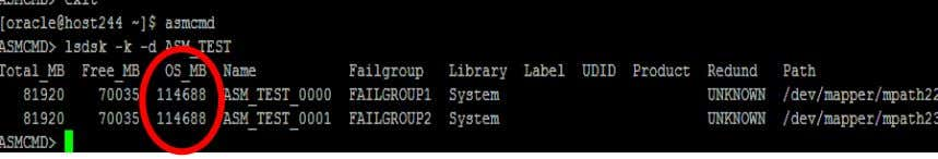 ASM instance 2. Restart all database instances on the server Figure 19: ASM diskgroup with 2