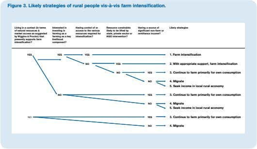 Figure 3. Likely strategies of rural people vis-à-vis farm intensification. Living in a context (in