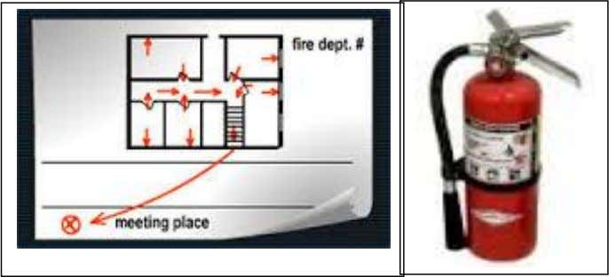 e) Safety guaranteed such as fire plan and fire extinguishers It is important for the pupils,